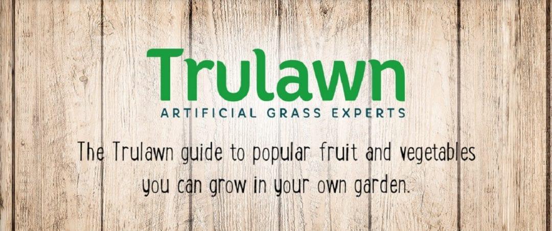 240718 Trulawn Fruit Veg Infographic Short