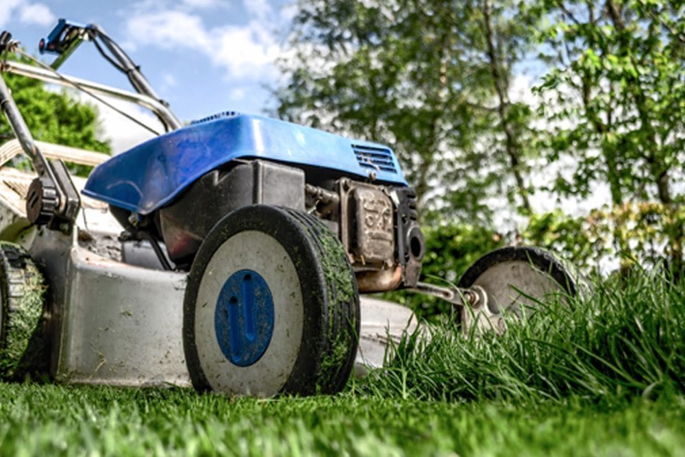 No more lawnmowers