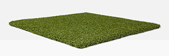 Trulawn ProPutt sample