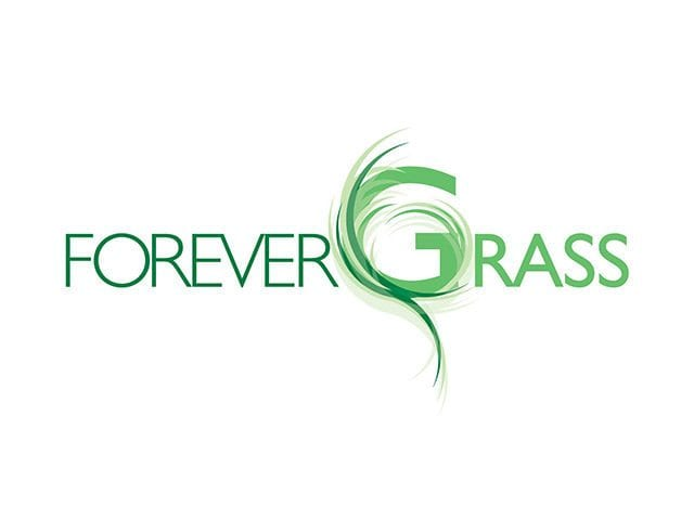 Forever Grass