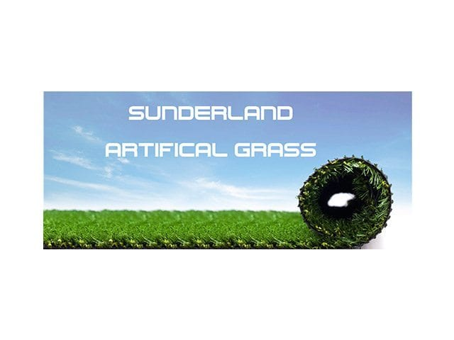 Sunderland Artificial Grass