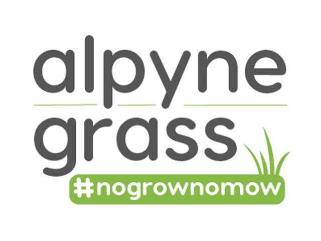 Alpynegrass