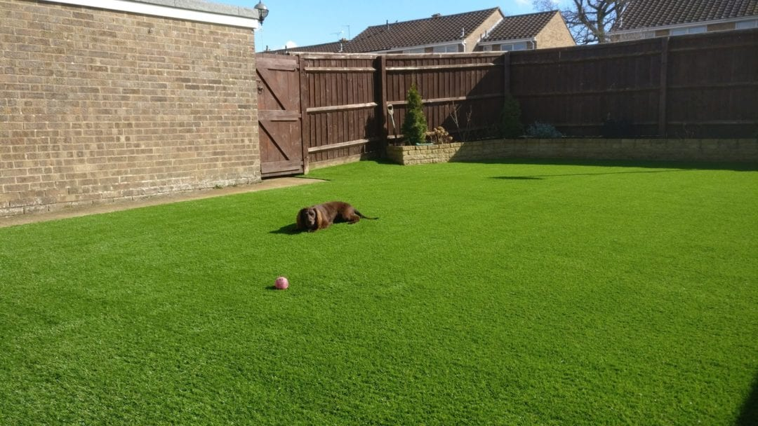 easy clean artificial grass