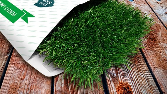 Trulawn Artificial Grass Sample Pack