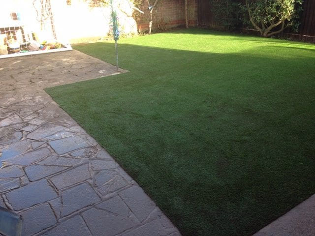 Neat Lines with a New Lawn
