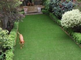 Example of Artificial Lawn in Chelsea London