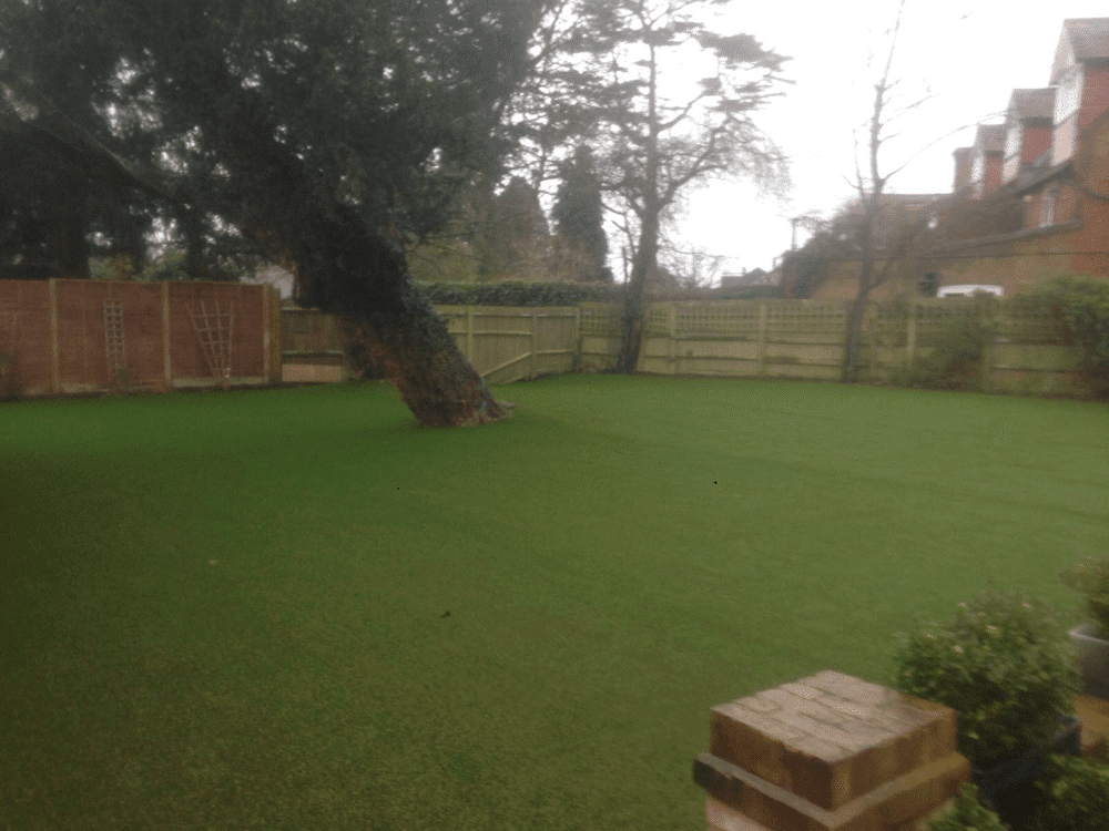 Improve Under-Tree Areas
