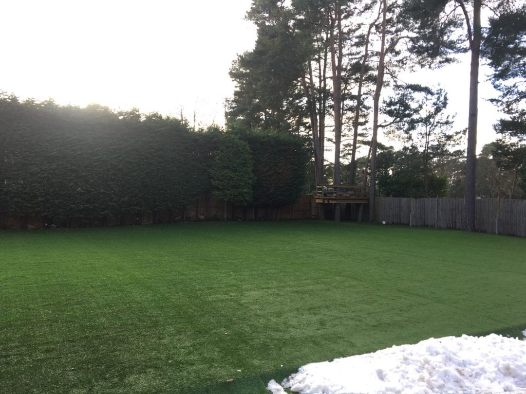 Large Lawn for Football Fans