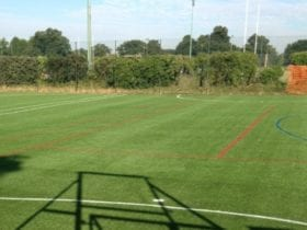 Painted artificial grass for sports