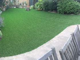 Moss Free in Fulham