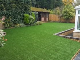 Luxurious Lawn in Kent