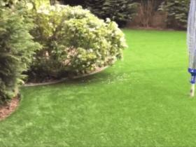 Large Luxury Back Garden