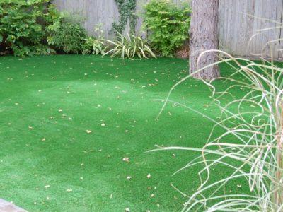 No Maintenance Garden