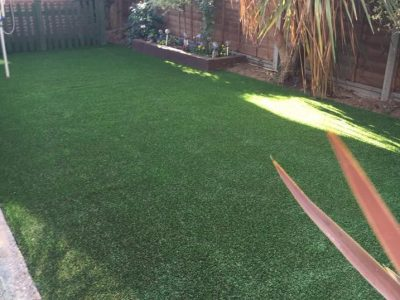 A Perfect Lawn for Pet Owners