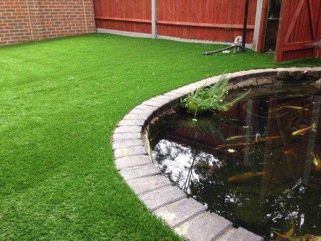 Perfect Pond Area