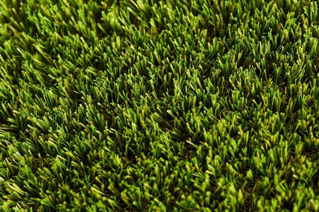 Brand NEW for 2017: Trulawn Optimum