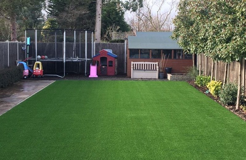 Long & Luxurious Lawn
