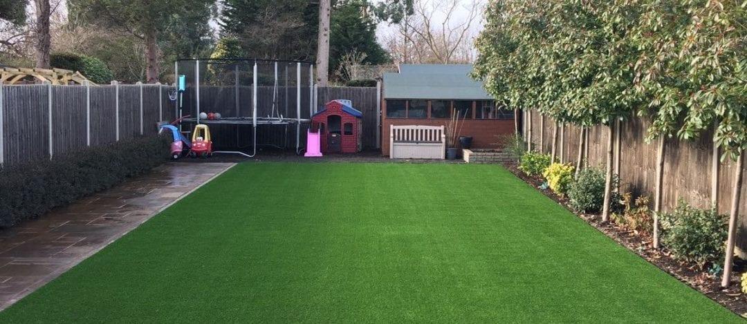 Long & Luxurious Lawn