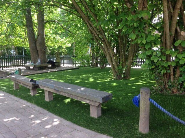 Improving Shady Areas at Butts Primary, Alton