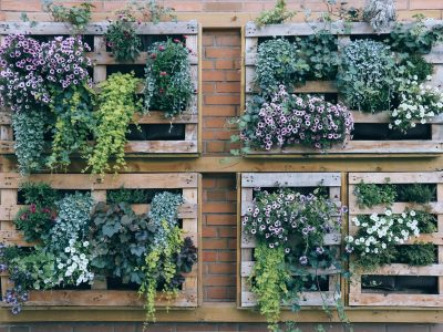 Love the Look: Vertical Gardening
