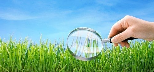 How Realistic is Artificial Grass?