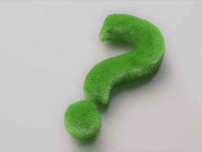 5 questions to ask before installing artificial grass
