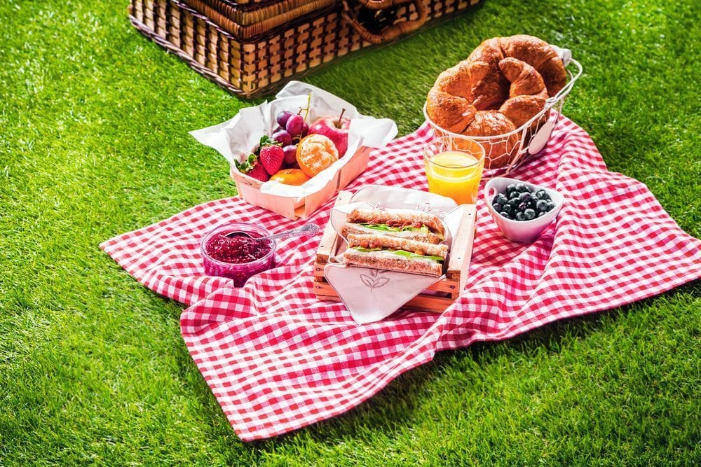 Picnic in Farnham on artificial grass