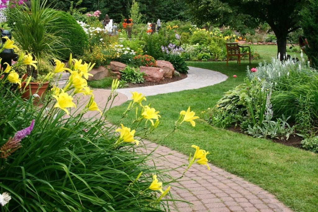 7 Simple ways to give your garden a spring clean