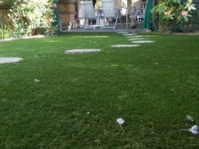 Stepping Stones cut out in fake lawn