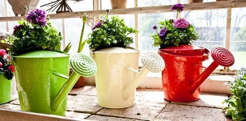 Gardening on a Budget: Recycling and Saving Money